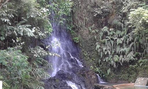 Buda seagull waterfalls