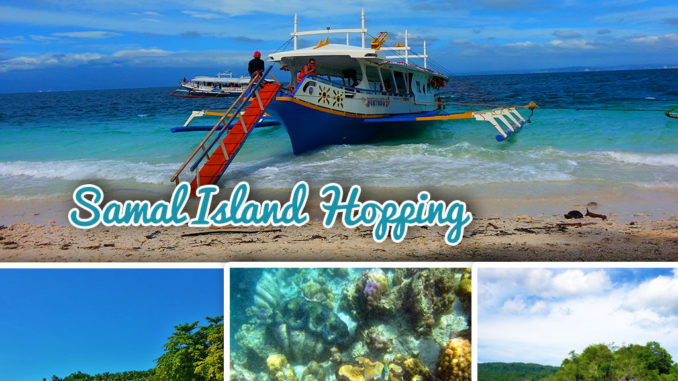 paradise island davao contact number